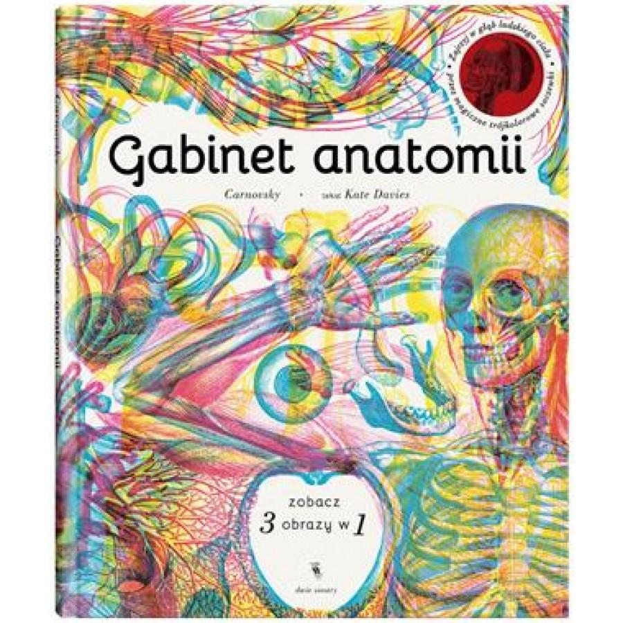 GABINET ANATOMII - Esy Floresy
