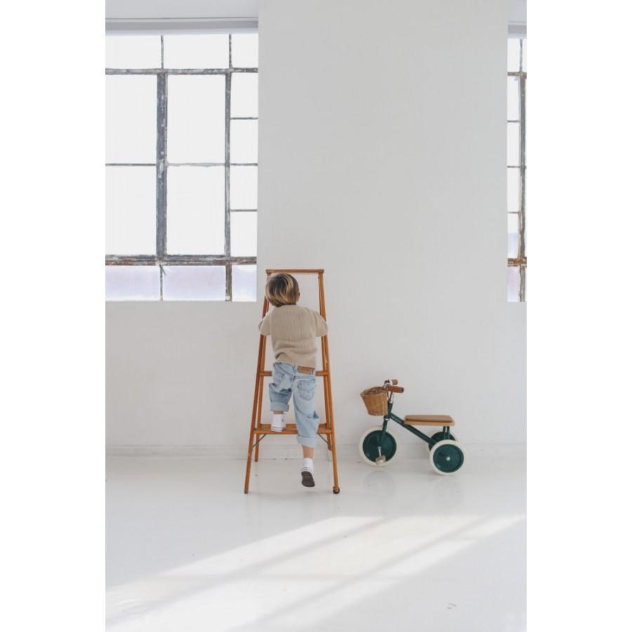 Banwood - Rowerek trójkołowy Trike Dark Green - Esy Floresy