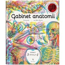 GABINET ANATOMII | Esy Floresy